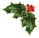 xmas_holly_leaves